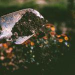 Tuinrenovatie: zo pak je dit aan