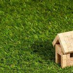 Huisdiervriendelijke tuin inrichten